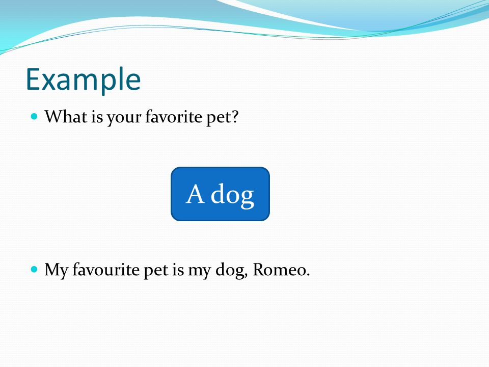 Example What is your favorite pet My favourite pet is my dog, Romeo. A dog