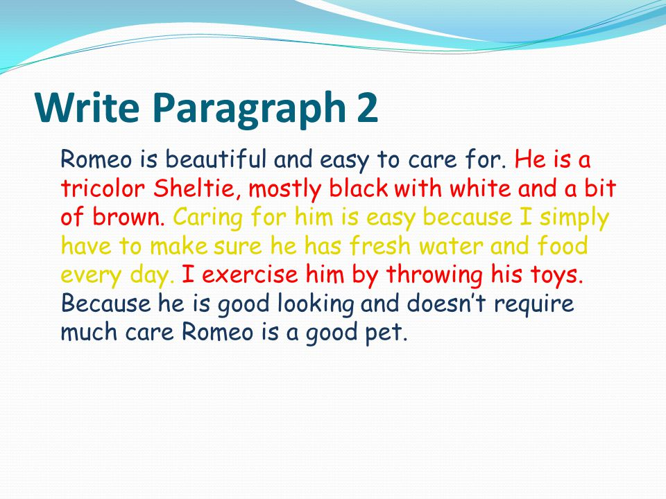 Write Paragraph 2 Romeo is beautiful and easy to care for.