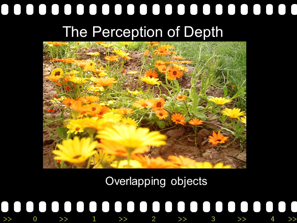 >>0 >>1 >> 2 >> 3 >> 4 >> The Perception of Depth Overlapping objects