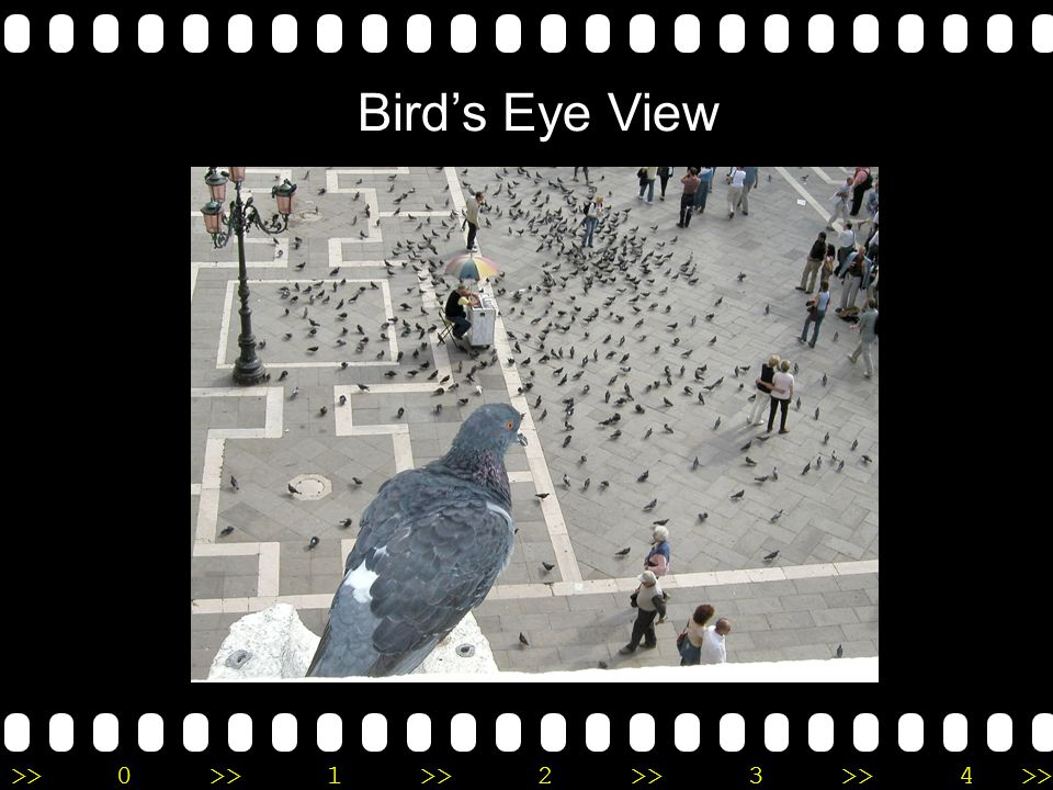 >>0 >>1 >> 2 >> 3 >> 4 >> Bird's Eye View