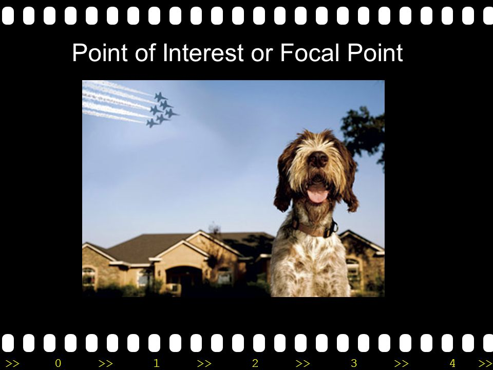 >>0 >>1 >> 2 >> 3 >> 4 >> Point of Interest or Focal Point