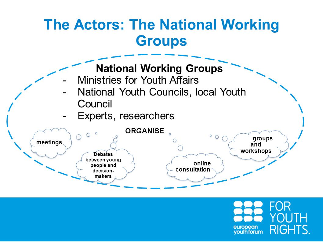 The Actors: The National Working Groups National Working Groups -Ministries for Youth Affairs -National Youth Councils, local Youth Council -Experts, researchers conduct consultations with young people and and regional wherever possible).