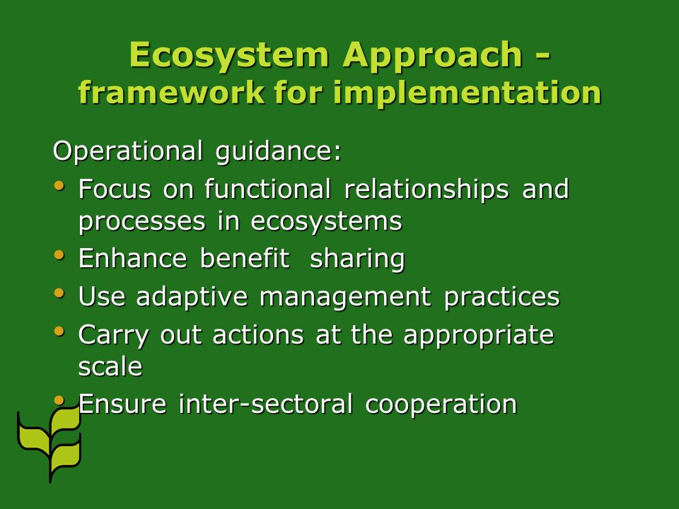 Ecosystem Approach - framework for implementation Operational guidance: Focus on functional relationships and processes in ecosystems Focus on functional relationships and processes in ecosystems Enhance benefit sharing Enhance benefit sharing Use adaptive management practices Use adaptive management practices Carry out actions at the appropriate scale Carry out actions at the appropriate scale Ensure inter-sectoral cooperation Ensure inter-sectoral cooperation