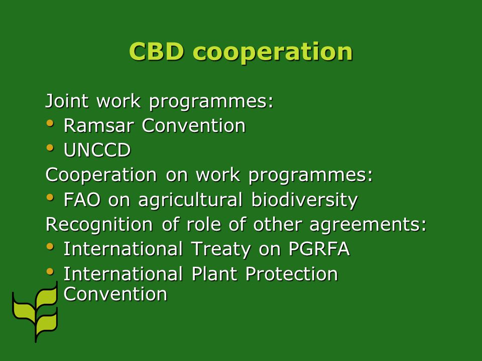 CBD cooperation Joint work programmes: Ramsar Convention Ramsar Convention UNCCD UNCCD Cooperation on work programmes: FAO on agricultural biodiversity FAO on agricultural biodiversity Recognition of role of other agreements: International Treaty on PGRFA International Treaty on PGRFA International Plant Protection Convention International Plant Protection Convention