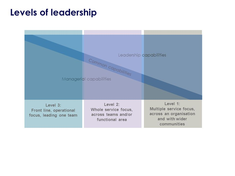Leadership capabilities Managerial capabilities Common capabilities Level 3: Front line, operational focus, leading one team Level 2: Whole service focus, across teams and/or functional area Level 1: Multiple service focus, across an organisation and with wider communities Levels of leadership