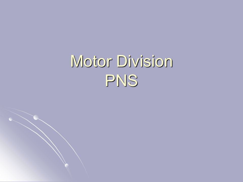 Motor Division PNS
