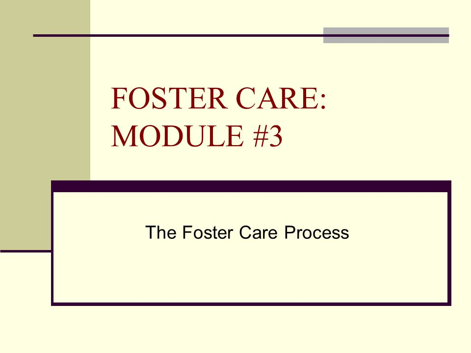 FOSTER CARE: MODULE #3 The Foster Care Process