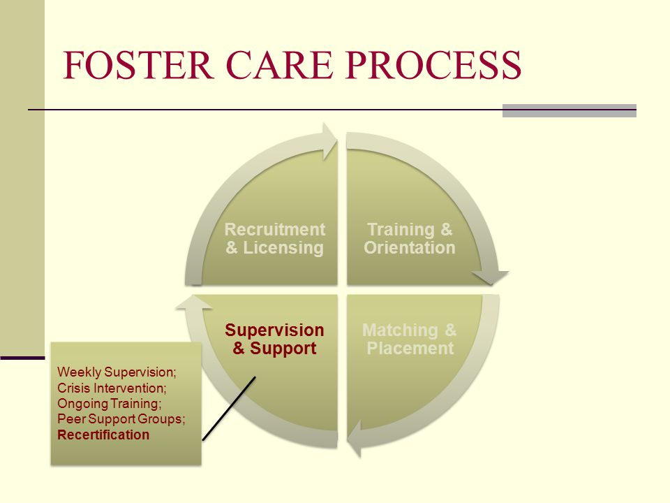 FOSTER CARE PROCESS Training & Orientation Matching & Placement Supervision & Support Recruitment & Licensing Weekly Supervision; Crisis Intervention; Ongoing Training; Peer Support Groups; Recertification Weekly Supervision; Crisis Intervention; Ongoing Training; Peer Support Groups; Recertification