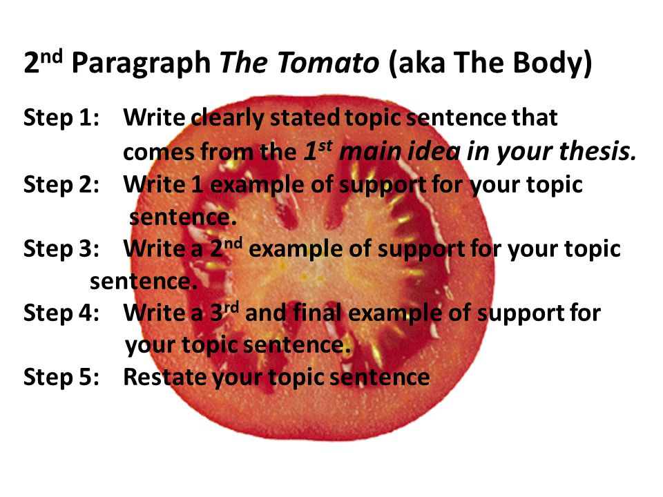 2 nd Paragraph The Tomato (aka The Body) Step 1:Write clearly stated topic sentence that comes from the 1 st main idea in your thesis.