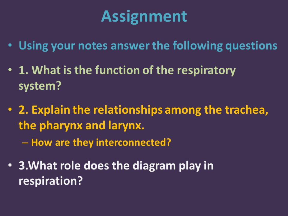 Assignment Using your notes answer the following questions 1.