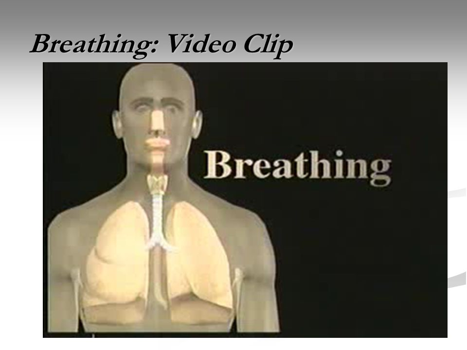 Breathing: Video Clip