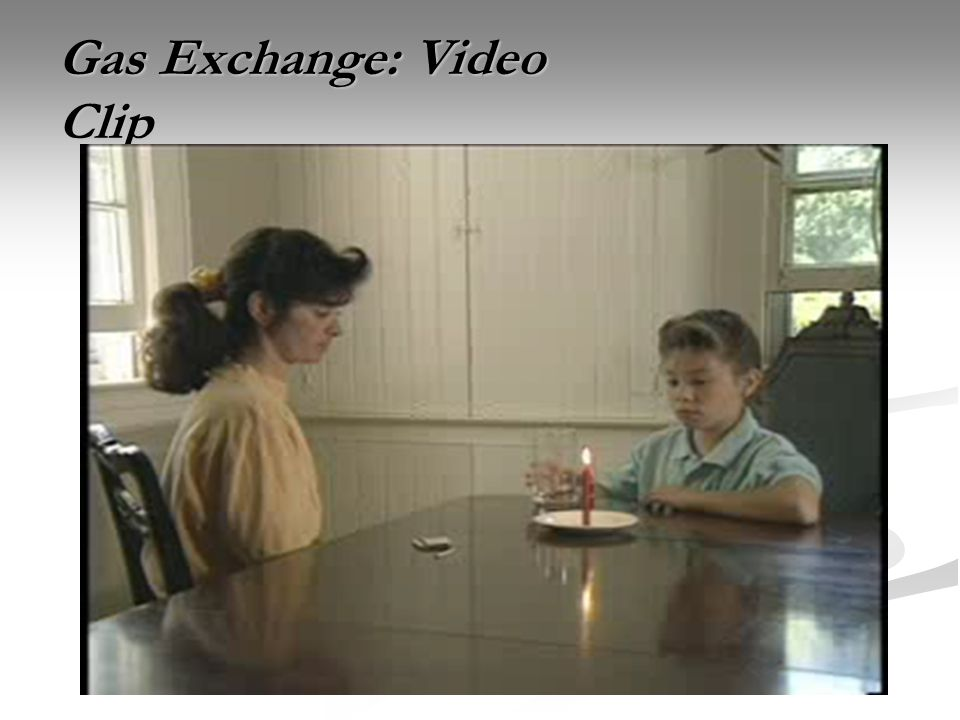 Gas Exchange: Video Clip