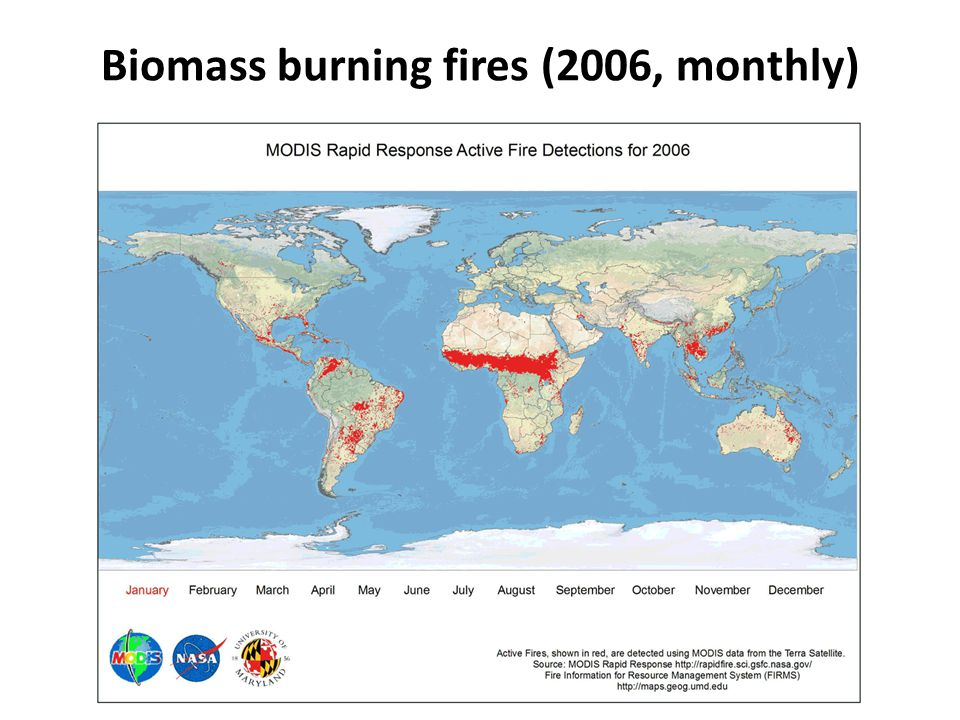 Biomass burning fires (2006, monthly)