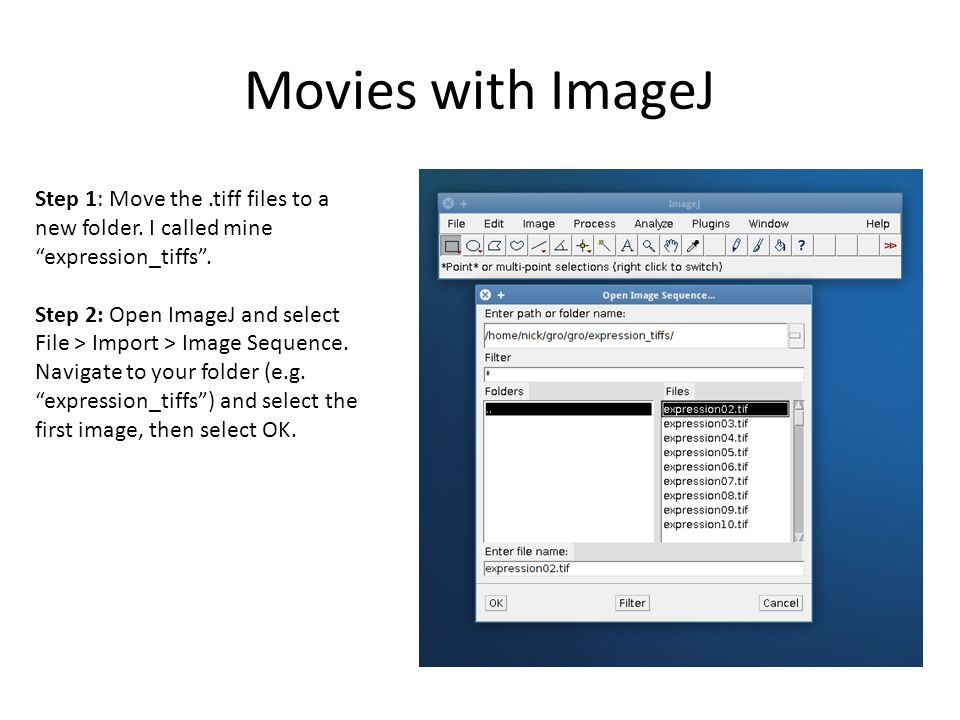 Gro Tutorial 4  Movies Saving snapshots Movies with ImageJ