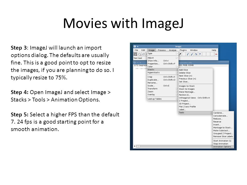Gro Tutorial 4  Movies Saving snapshots Movies with ImageJ Other