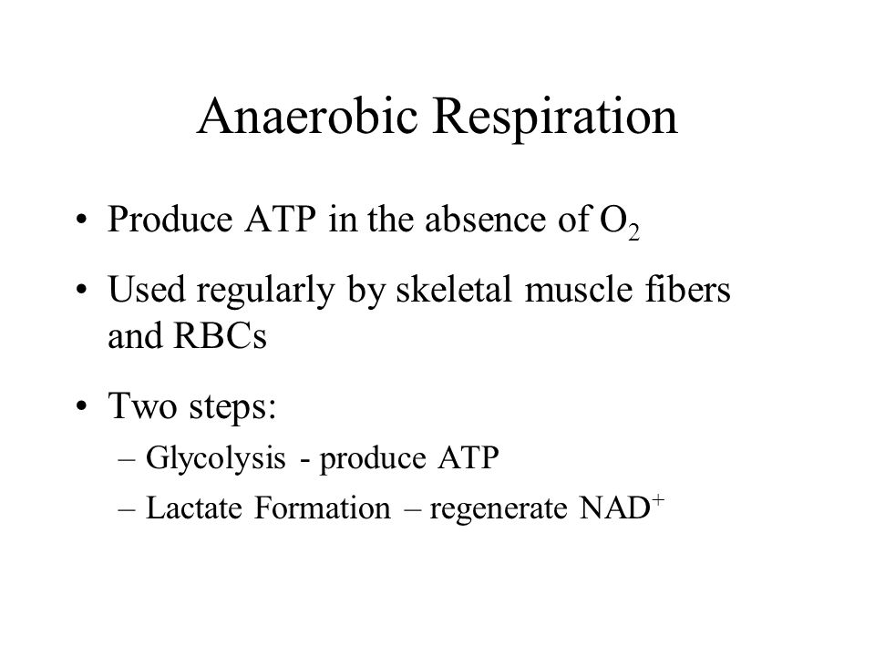Anaerobic Respiration Produce ATP in the absence of O 2 Used regularly by skeletal muscle fibers and RBCs Two steps: –Glycolysis - produce ATP –Lactate Formation – regenerate NAD +