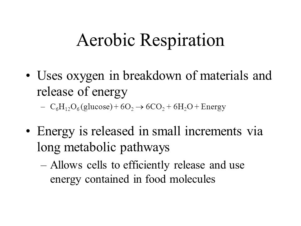 Aerobic Respiration Uses oxygen in breakdown of materials and release of energy –C 6 H 12 O 6 (glucose) + 6O 2  6CO 2 + 6H 2 O + Energy Energy is released in small increments via long metabolic pathways –Allows cells to efficiently release and use energy contained in food molecules