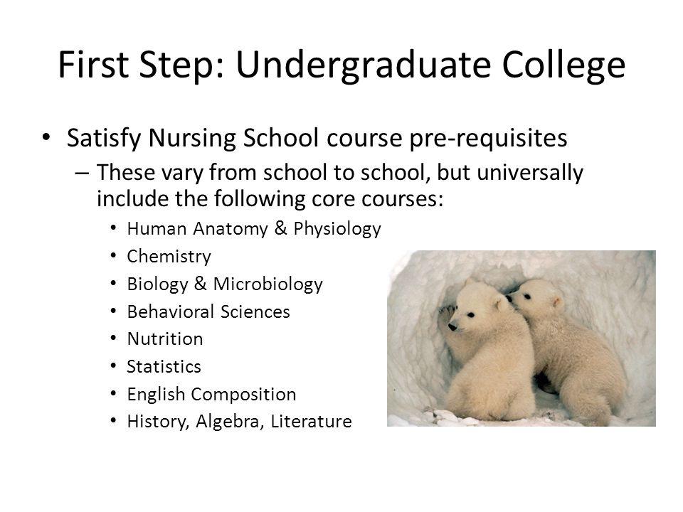 The Nursing School Application Guide UC Berkeley – Pre Health ...