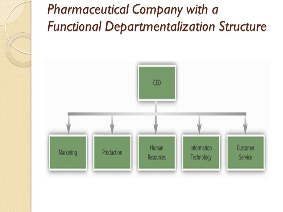 Pharmaceutical Company with a Functional Departmentalization Structure