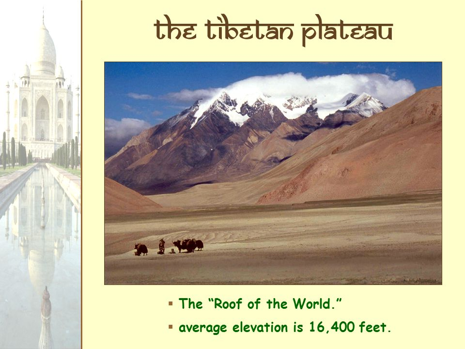 The tibetan Plateau  The Roof of the World.  average elevation is 16,400 feet.