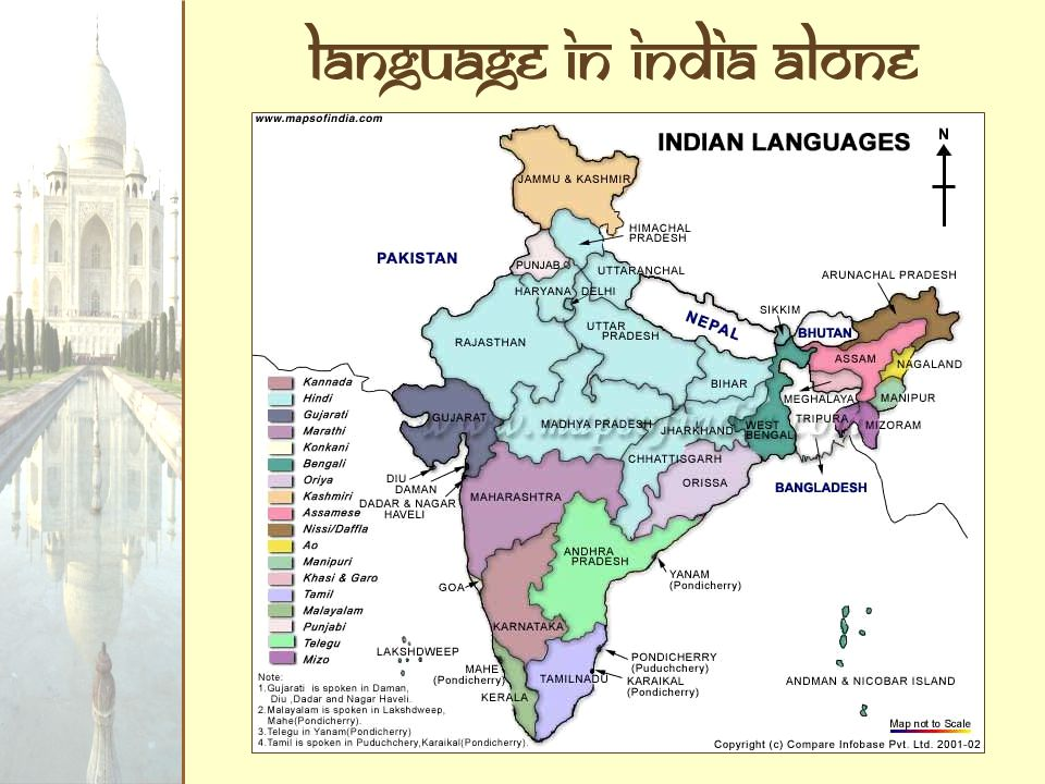 Language in India alone