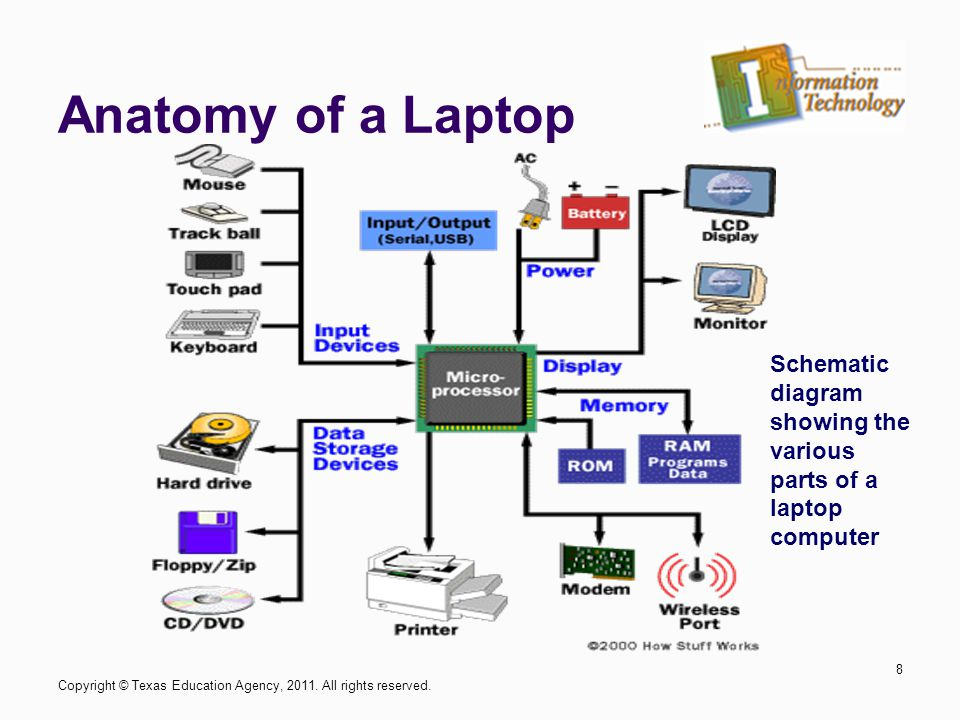 Enjoyable Diagram Of Internal Computer Parts Laptop Online Wiring Diagram Wiring 101 Cranwise Assnl