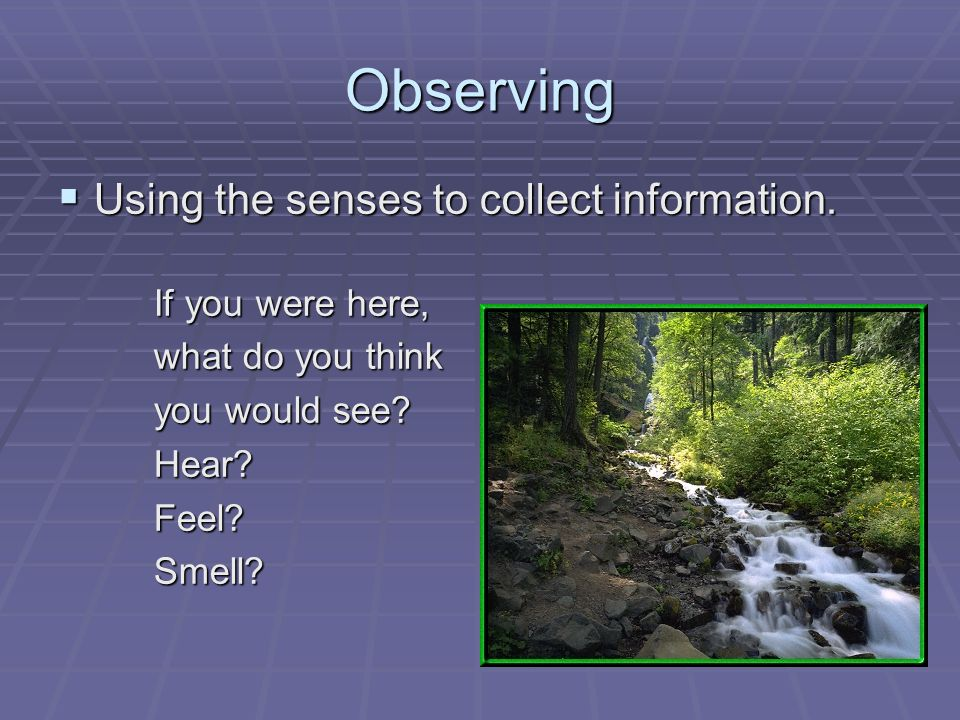 Observing  Using the senses to collect information.