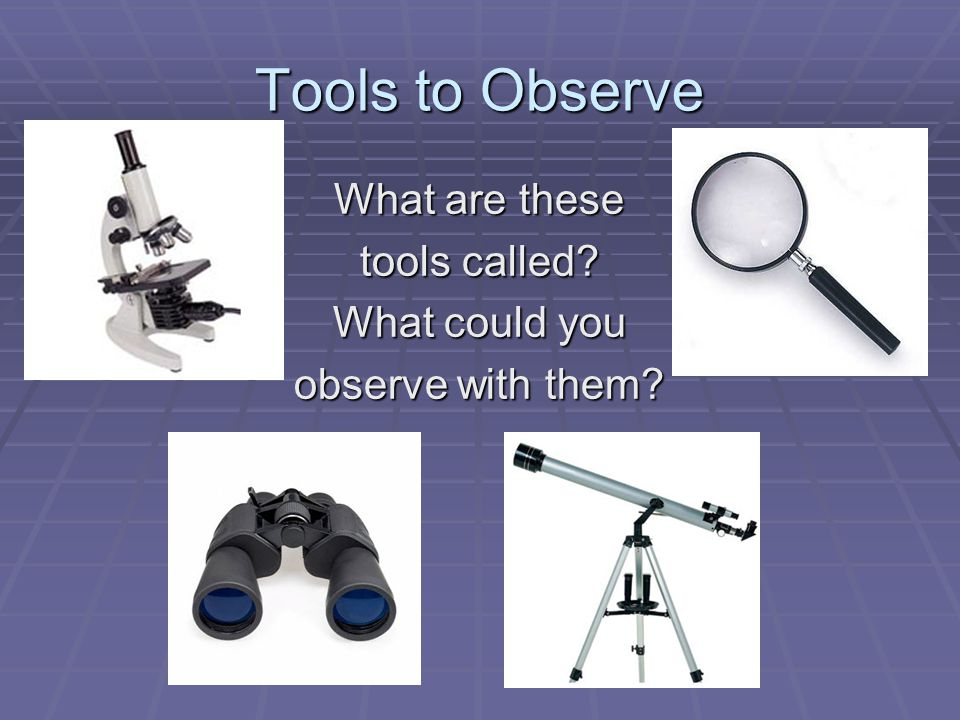 Tools to Observe What are these tools called What could you observe with them