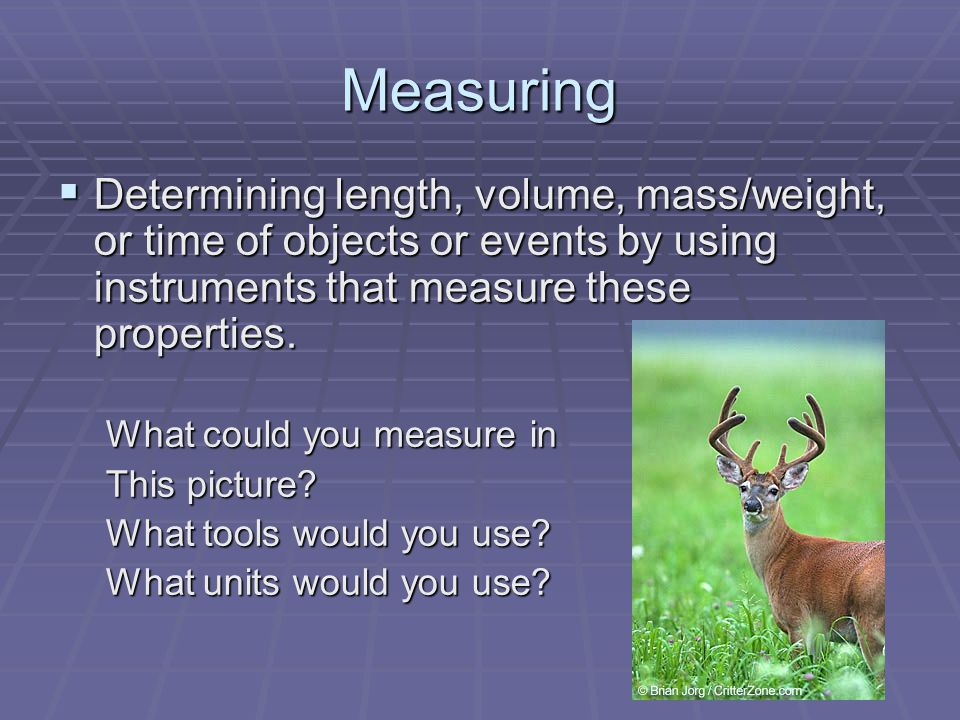 Measuring  Determining length, volume, mass/weight, or time of objects or events by using instruments that measure these properties.
