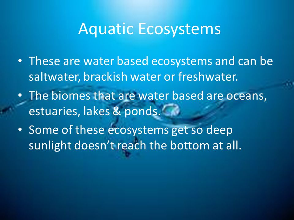 Aquatic Ecosystems These are water based ecosystems and can be saltwater, brackish water or freshwater.