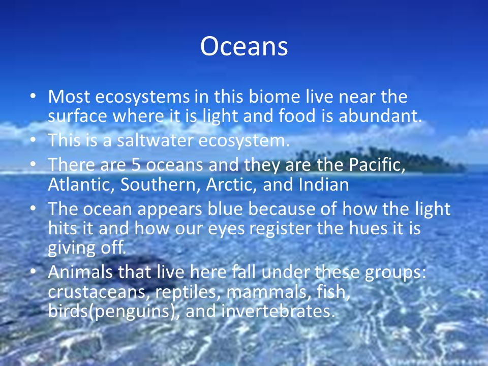 Oceans Most ecosystems in this biome live near the surface where it is light and food is abundant.
