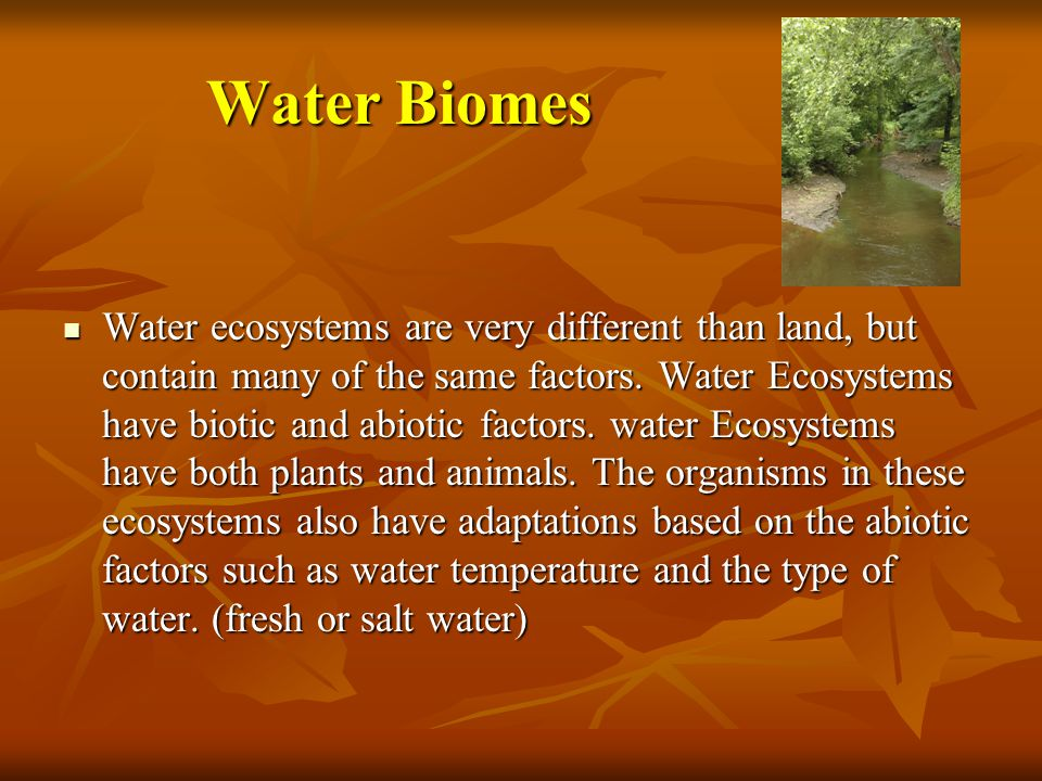 Water Biomes Water ecosystems are very different than land, but contain many of the same factors.