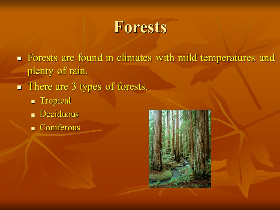 Forests Forests are found in climates with mild temperatures and plenty of rain.