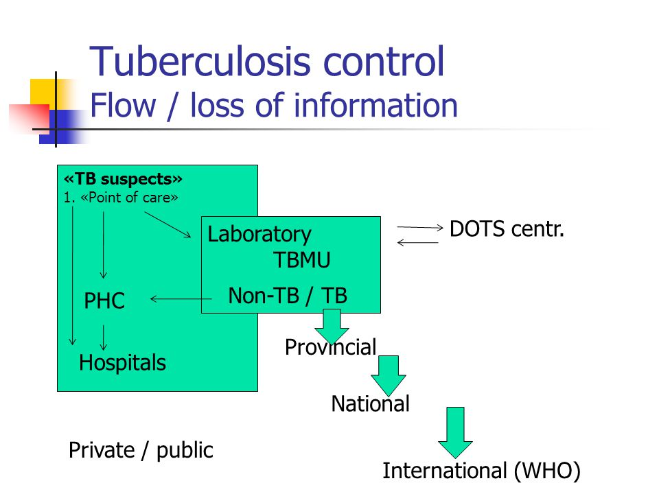 Tuberculosis control Flow / loss of information Symptomatics Laboratory TBM Provincial National International (WHO) PHC Hospital serv.