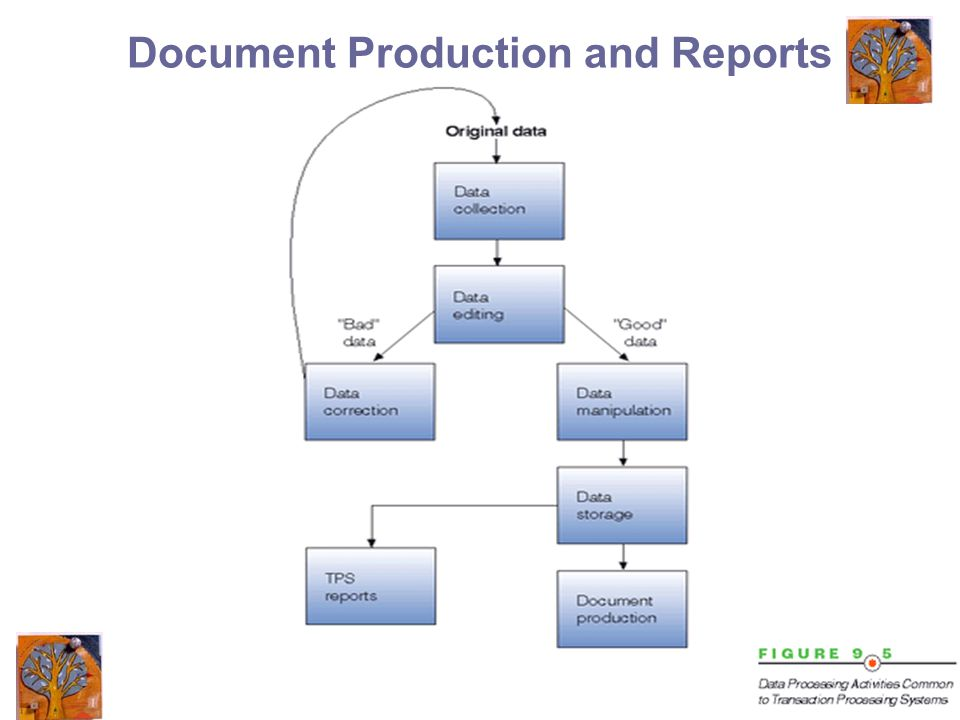 12 Document Production and Reports