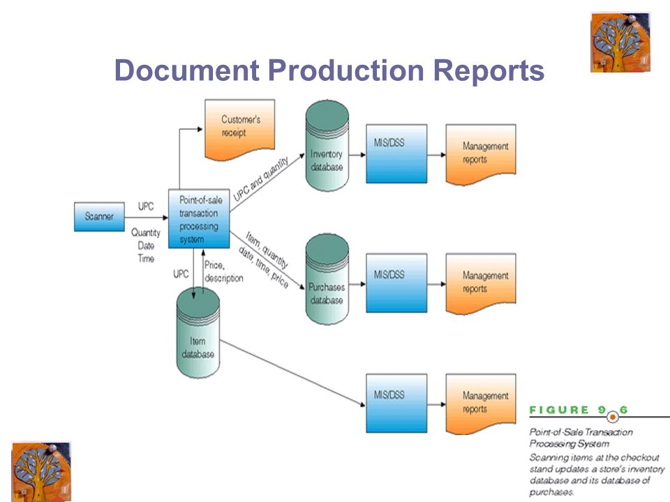 16 Document Production Reports
