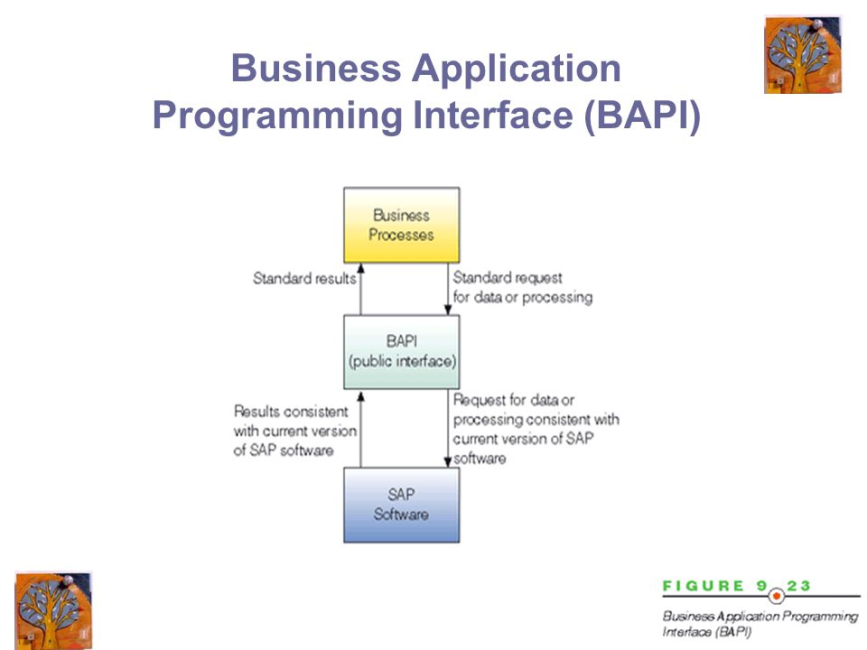 44 Business Application Programming Interface (BAPI)