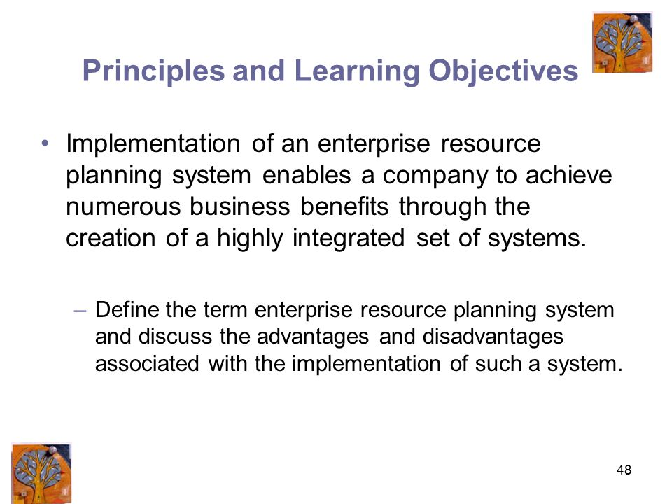 48 Principles and Learning Objectives Implementation of an enterprise resource planning system enables a company to achieve numerous business benefits through the creation of a highly integrated set of systems.