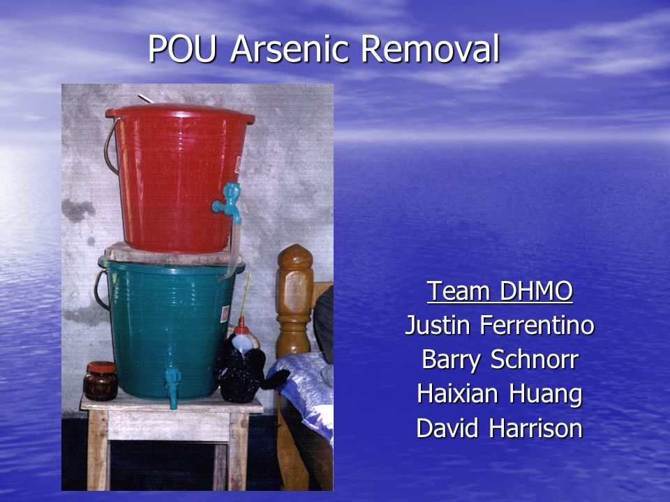 POU Arsenic Removal Team DHMO Justin Ferrentino Barry Schnorr Haixian Huang David Harrison