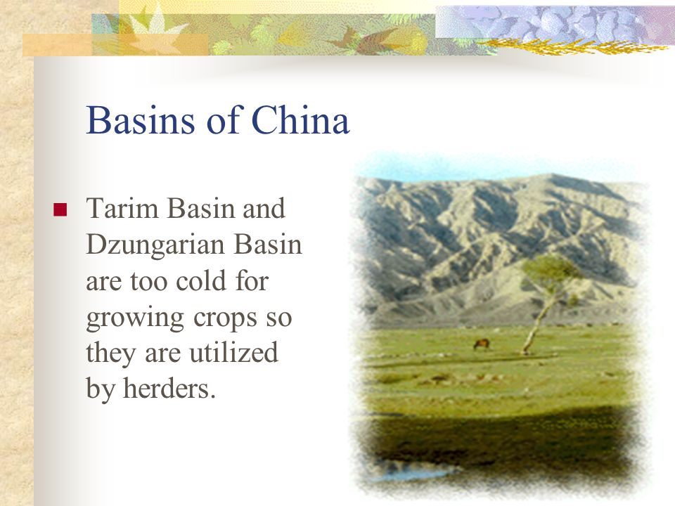 Basins of China Tarim Basin and Dzungarian Basin are too cold for growing crops so they are utilized by herders.
