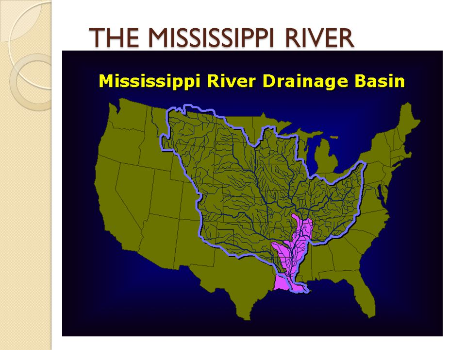THE MISSISSIPPI RIVER  General facts: Third largest drainage basin