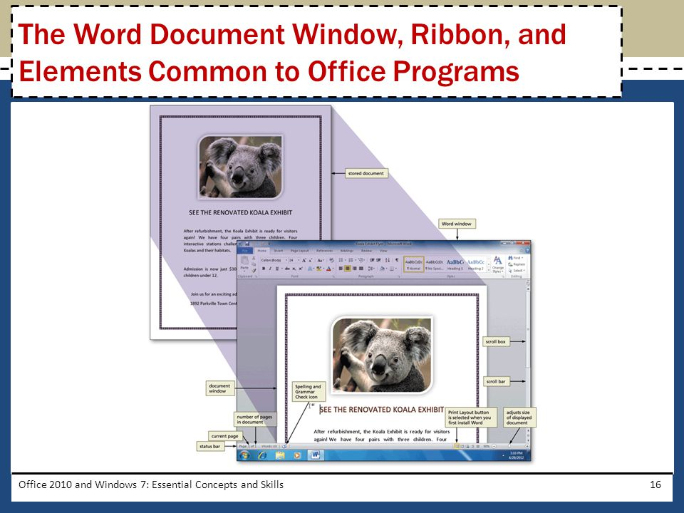 Office 2010 and Windows 7: Essential Concepts and Skills16 The Word Document Window, Ribbon, and Elements Common to Office Programs