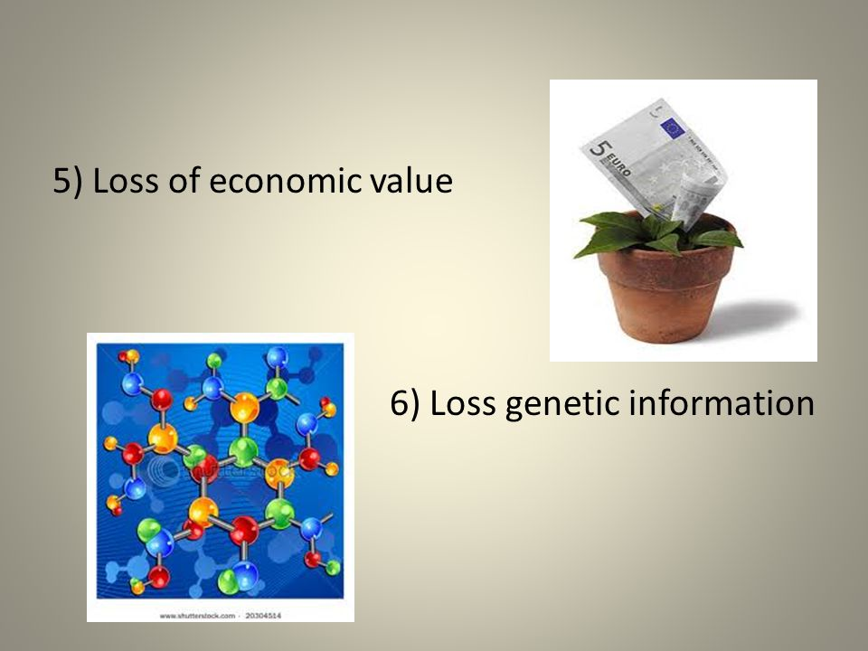 5) Loss of economic value 6) Loss genetic information