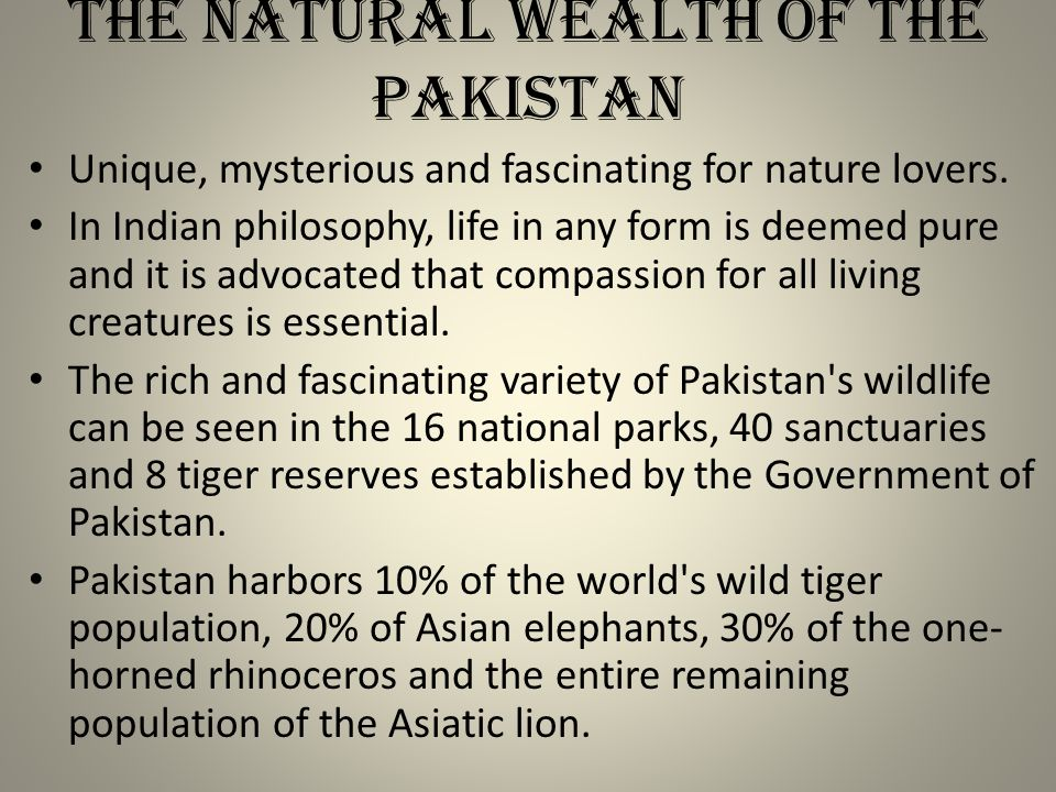 The Natural wealth of the Pakistan Unique, mysterious and fascinating for nature lovers.