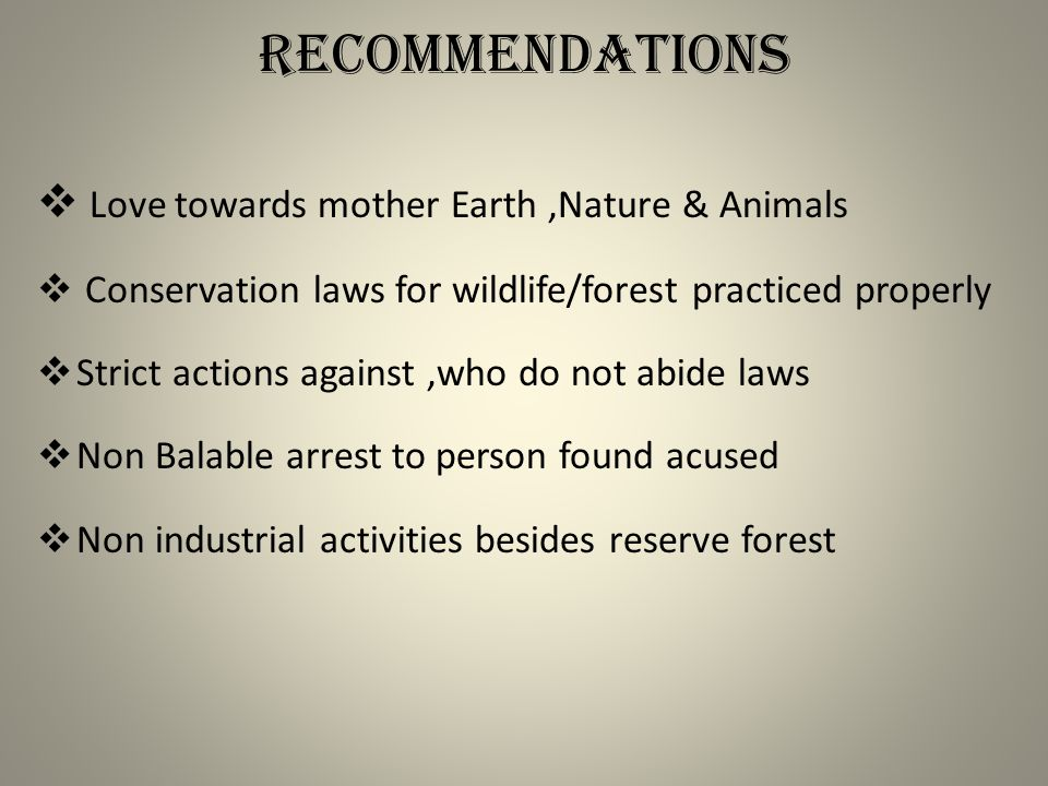 Recommendations  Love towards mother Earth,Nature & Animals  Conservation laws for wildlife/forest practiced properly  Strict actions against,who do not abide laws  Non Balable arrest to person found acused  Non industrial activities besides reserve forest