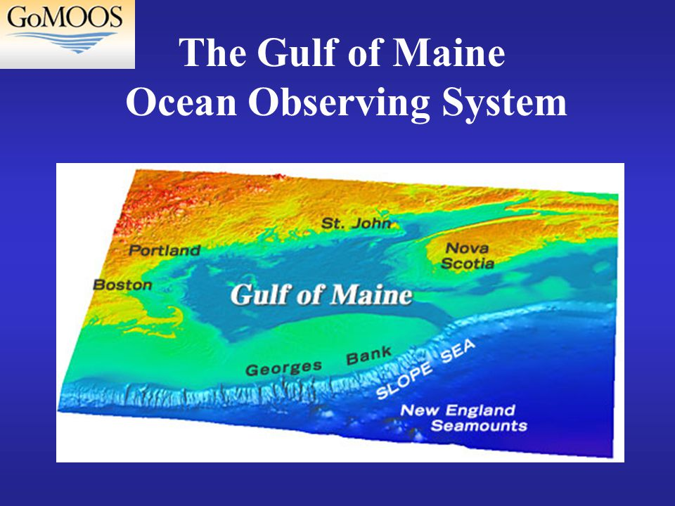 The Gulf of Maine Ocean Observing System