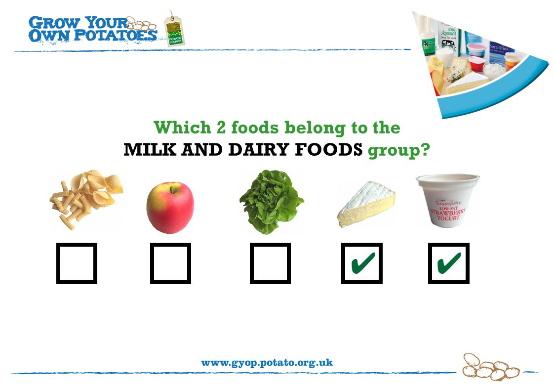 Which 2 foods belong to the MILK AND DAIRY FOODS group