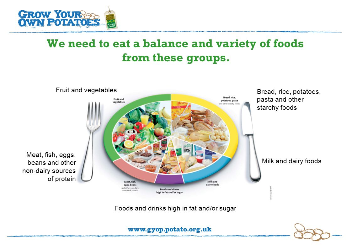 We need to eat a balance and variety of foods from these groups.