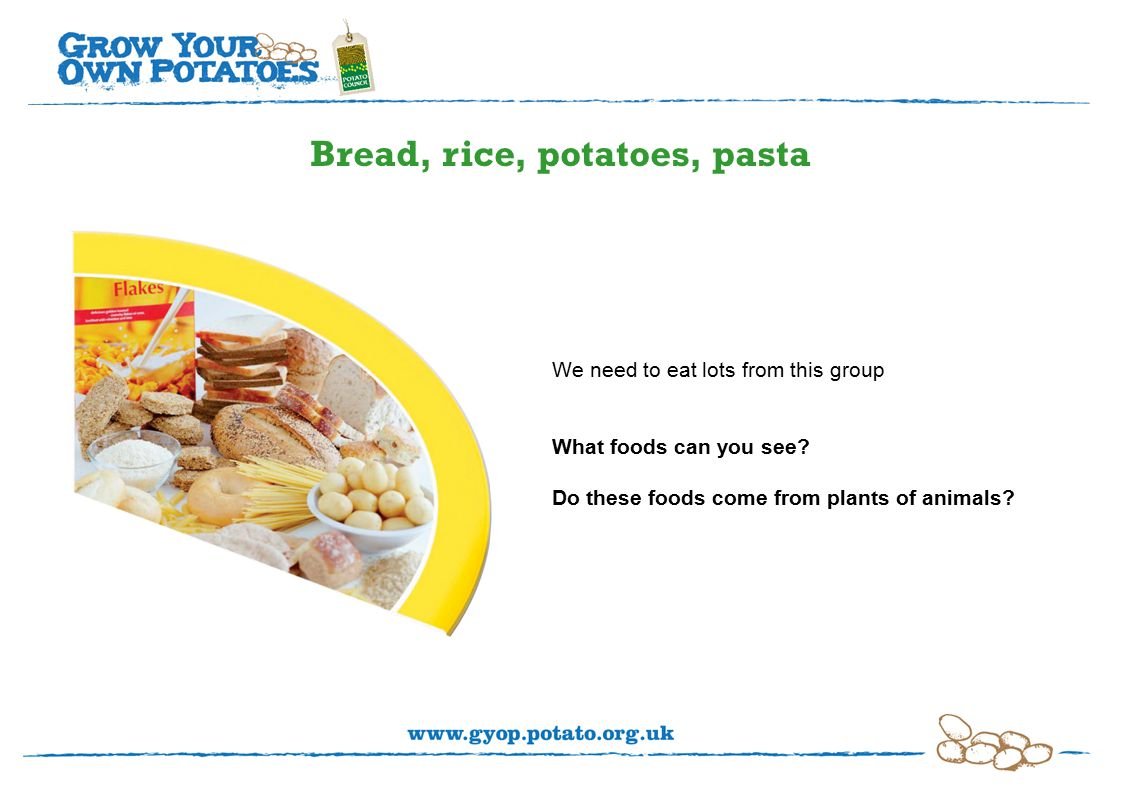 Bread, rice, potatoes, pasta We need to eat lots from this group What foods can you see.