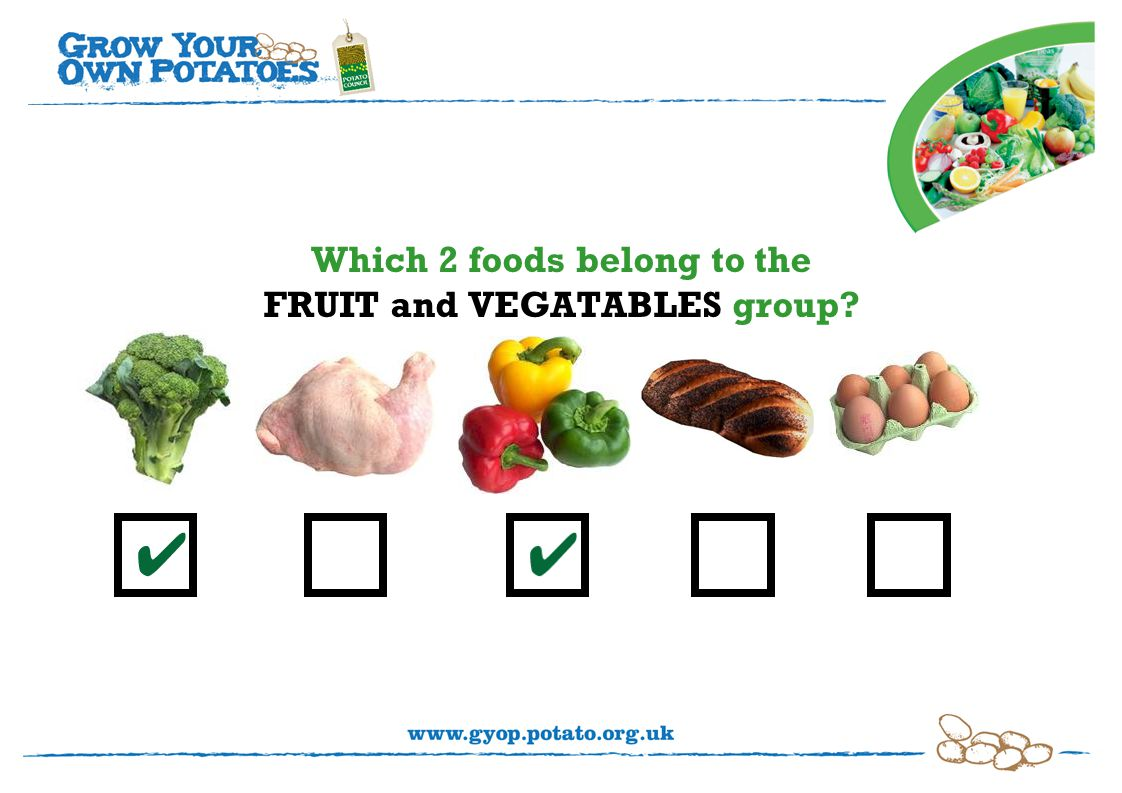 Which 2 foods belong to the FRUIT and VEGATABLES group